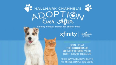 Promotional flyer for Hallmark Channel's Adoption Ever After event.